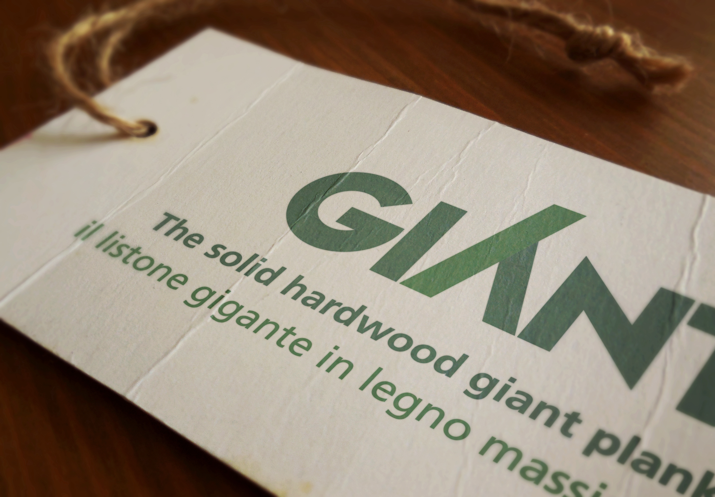 Giant® Brand Image